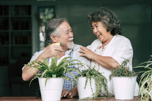 elderly-couples-talking-together-plant-trees-pots_1150-7893