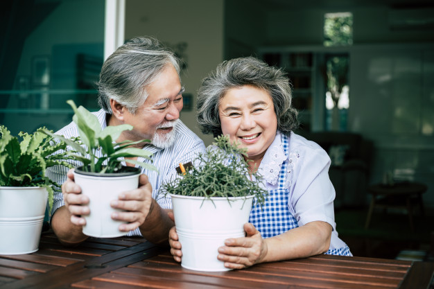 elderly-couples-talking-together-plant-trees-pots_1150-7838